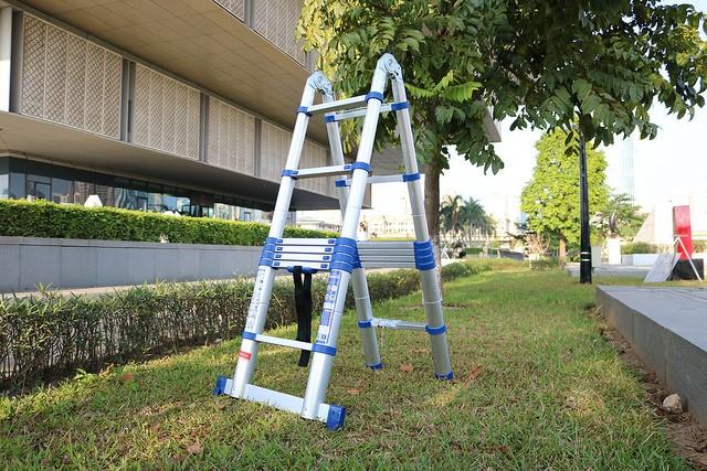 Sử dụng thang nhôm tỉa cây cảnh ngoài sân